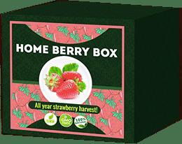 Home Berry Box Mi az?